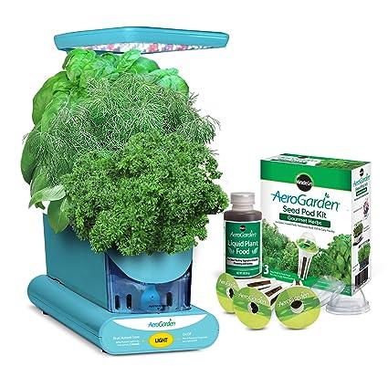 Amazon.com: Kit gourmet de receptáculo de semilla de ...