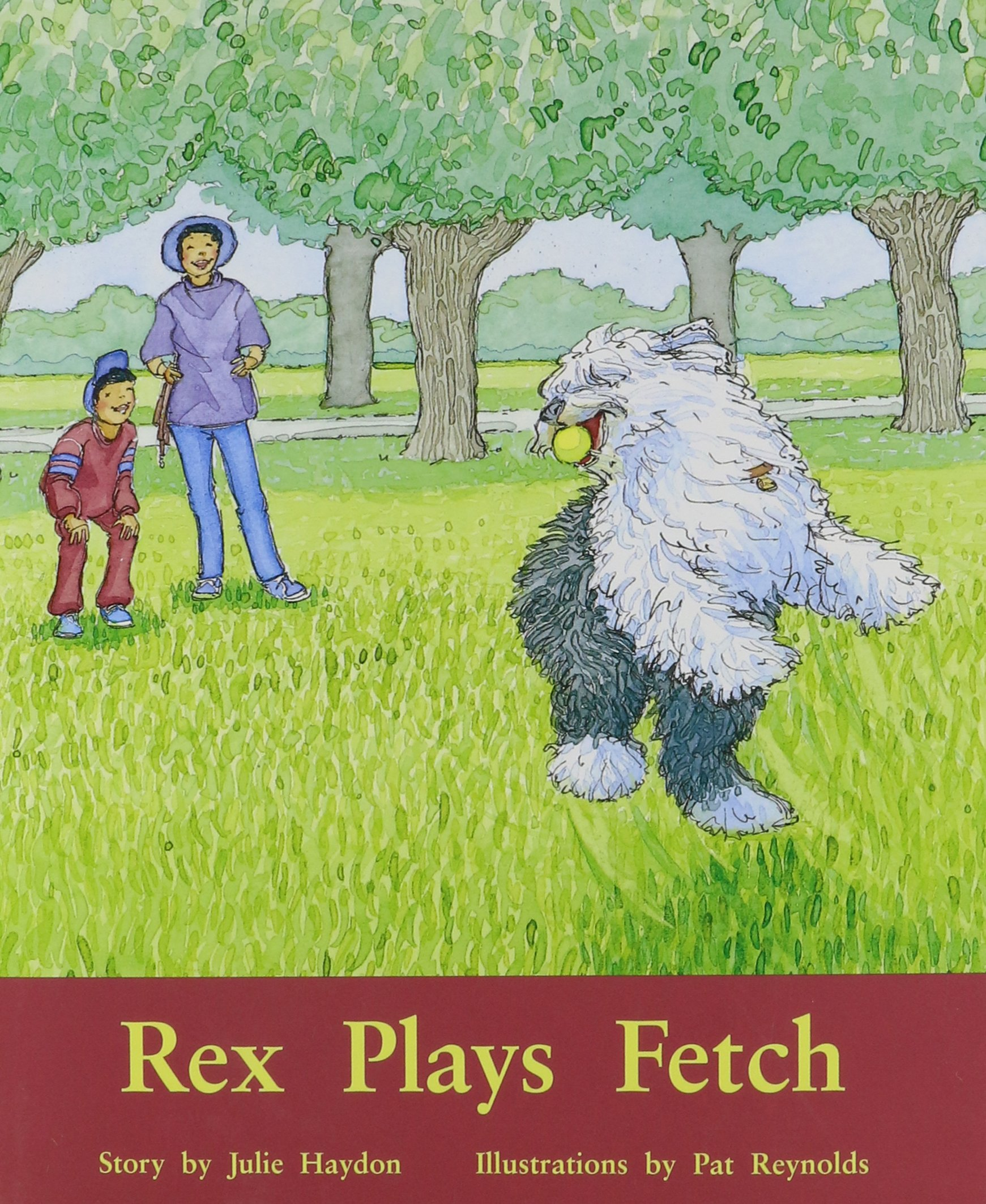 Download Rigby PM Plus: Individual Student Edition Purple (19-20) Rex Plays Fetch pdf