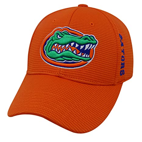 huge selection of 04f14 1bba2 Amazon.com   Florida Gators Official NCAA One Fit Booster Plus Hat Cap by  Top of the World 038265   Sports   Outdoors