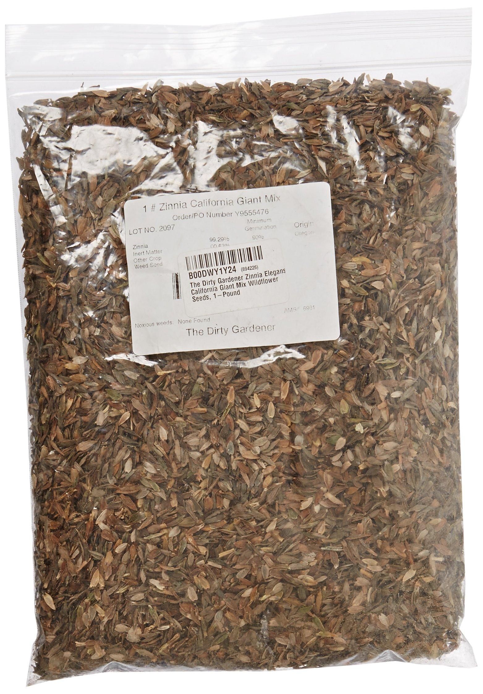 The Dirty Gardener Zinnia Elegans California Giant Mix Wildflower Seeds, 1-Pound by The Dirty Gardener