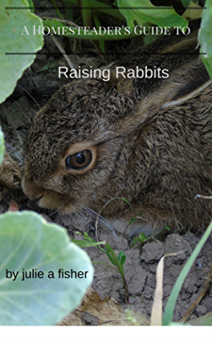 Homesteader's Guide to Raising Rabbits