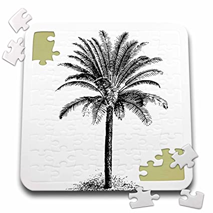 Amazon andrea haase art illustration vintage palm tree andrea haase art illustration vintage palm tree drawing black and white 10x10 inch puzzle thecheapjerseys Gallery