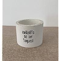 Maceta de cemento para cactus