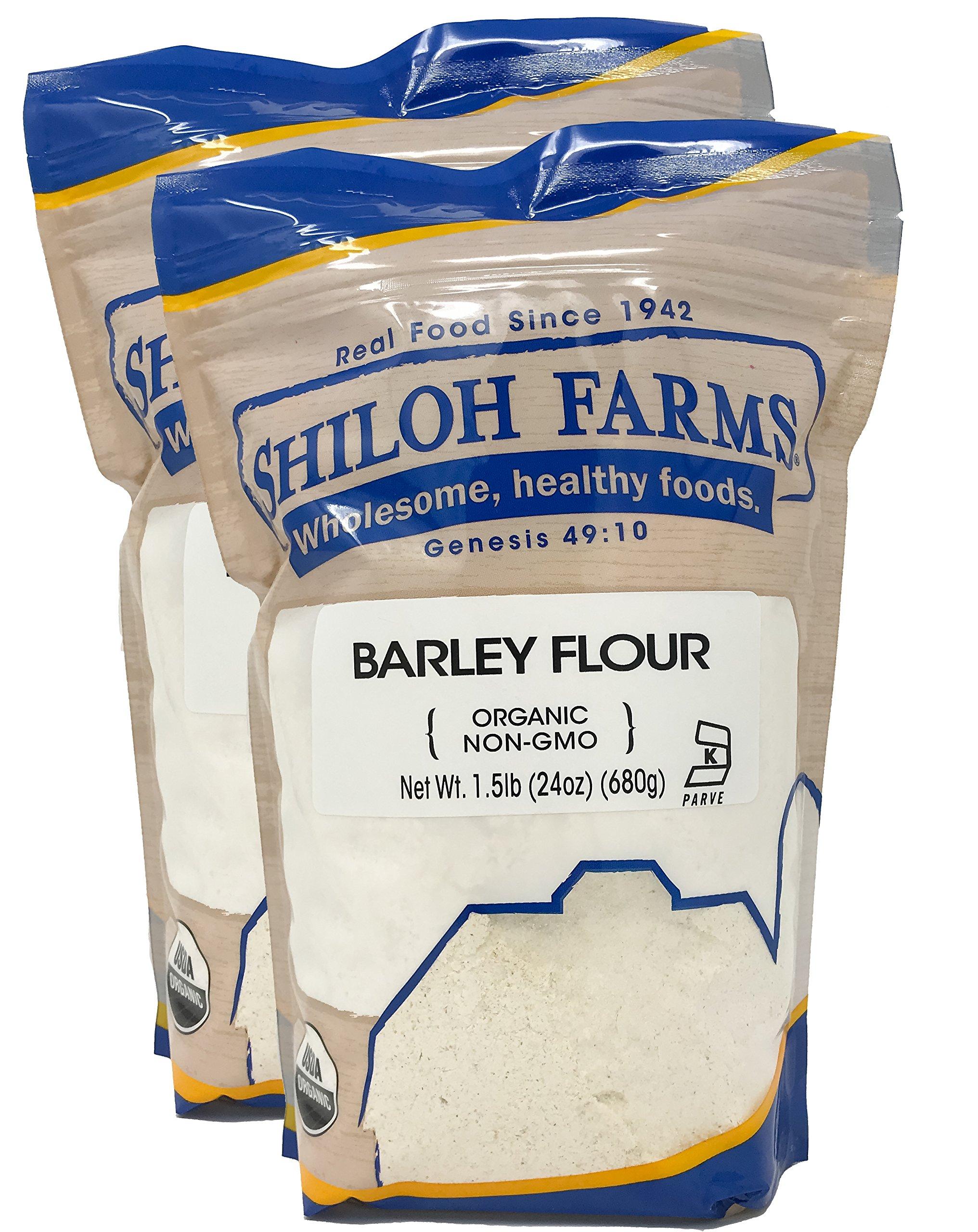 Shiloh Farms - Organic Barley Flour 24 oz - 2 pack