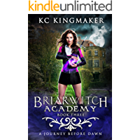 Briarwitch Academy 3: A Journey Before Dawn book cover