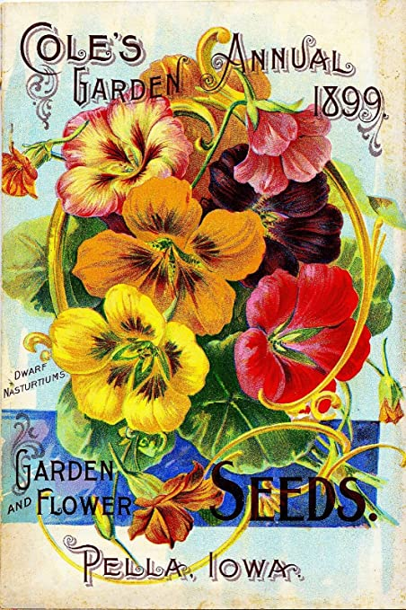 1899 Pella, Iowa Coleu0027s Garden Vintage Flowers Seed Packet Catalogue Travel  Advertisement Collectible Wall Decor