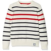 Zippy Boy's Sweatshirt