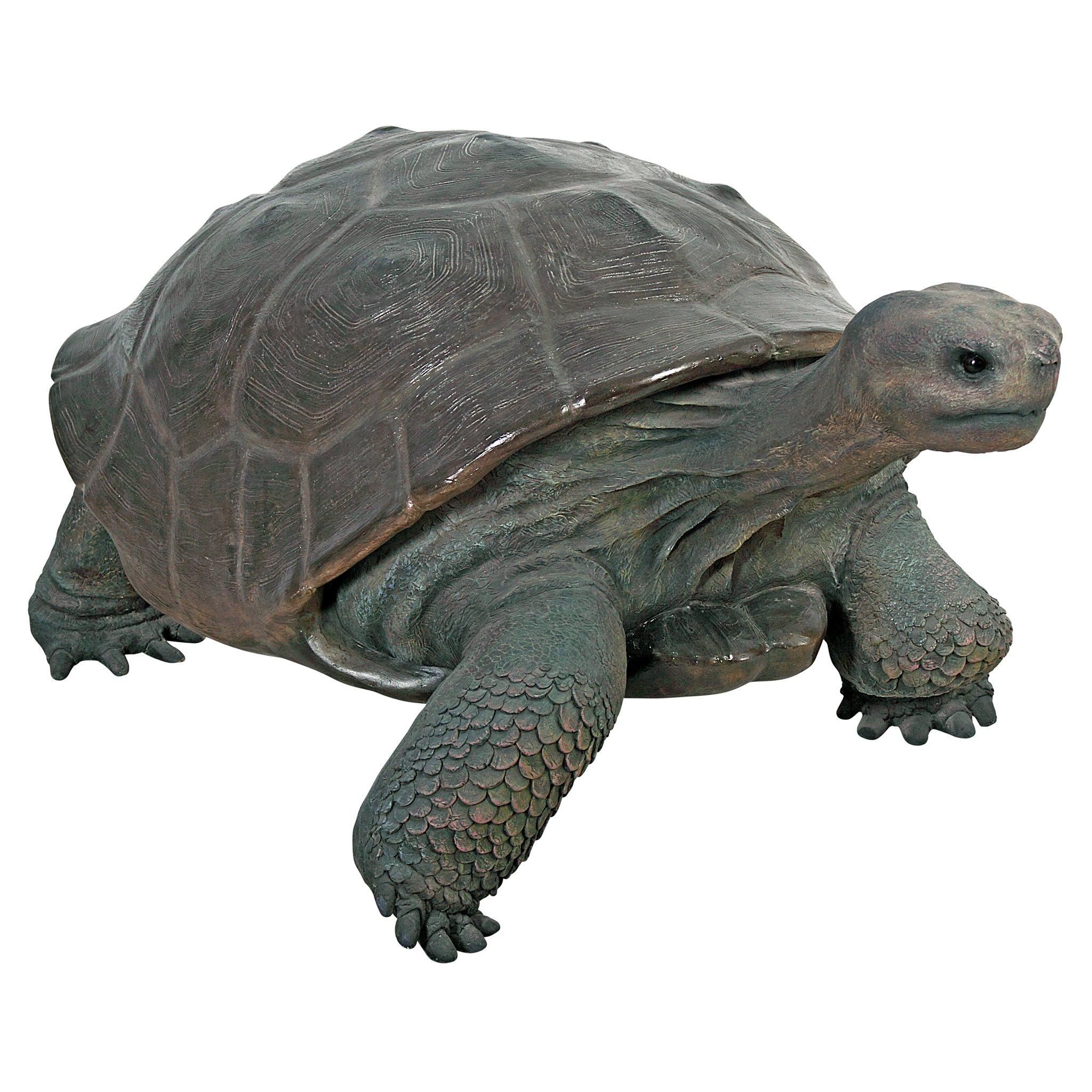 Design Toscano The Grand Scale Wildlife Animal Galapagos Tortoise Statue