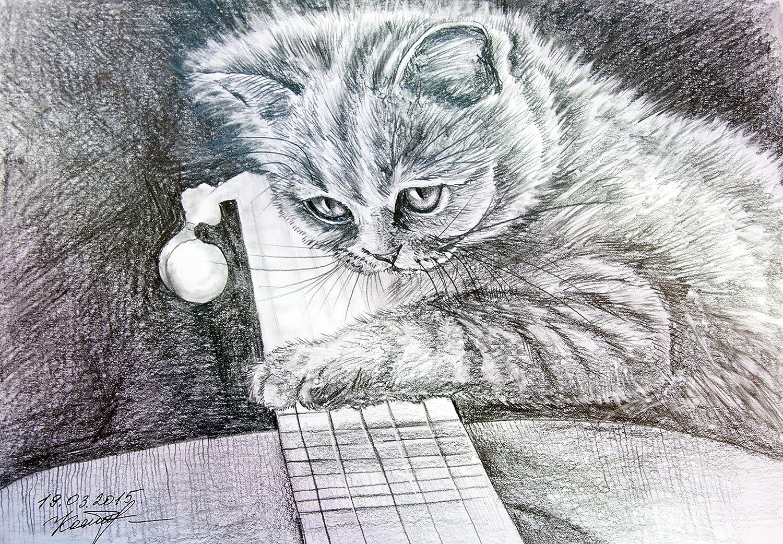 Amazon com a kitten with a guitar original cat watercolor pencil