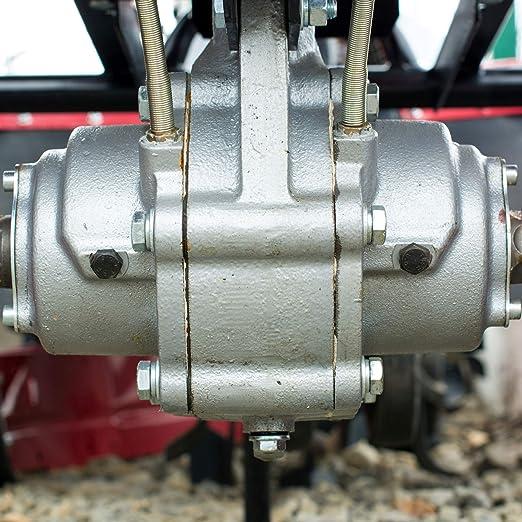 Weima wm1100 a de 6 Diff 6 PS 296 CCM fresado Ancho 120 cm ...