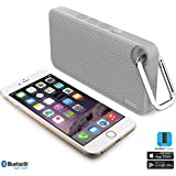 iLuv AudMini Smart 6, Portable Weather Resistant App Enabled FM Radio BT Speaker w/EMERGENCY Panic Button for iPhone, iPad, Samsung Galaxy, Tablet, other Bluetooth Devices and Echo dot (Grey)