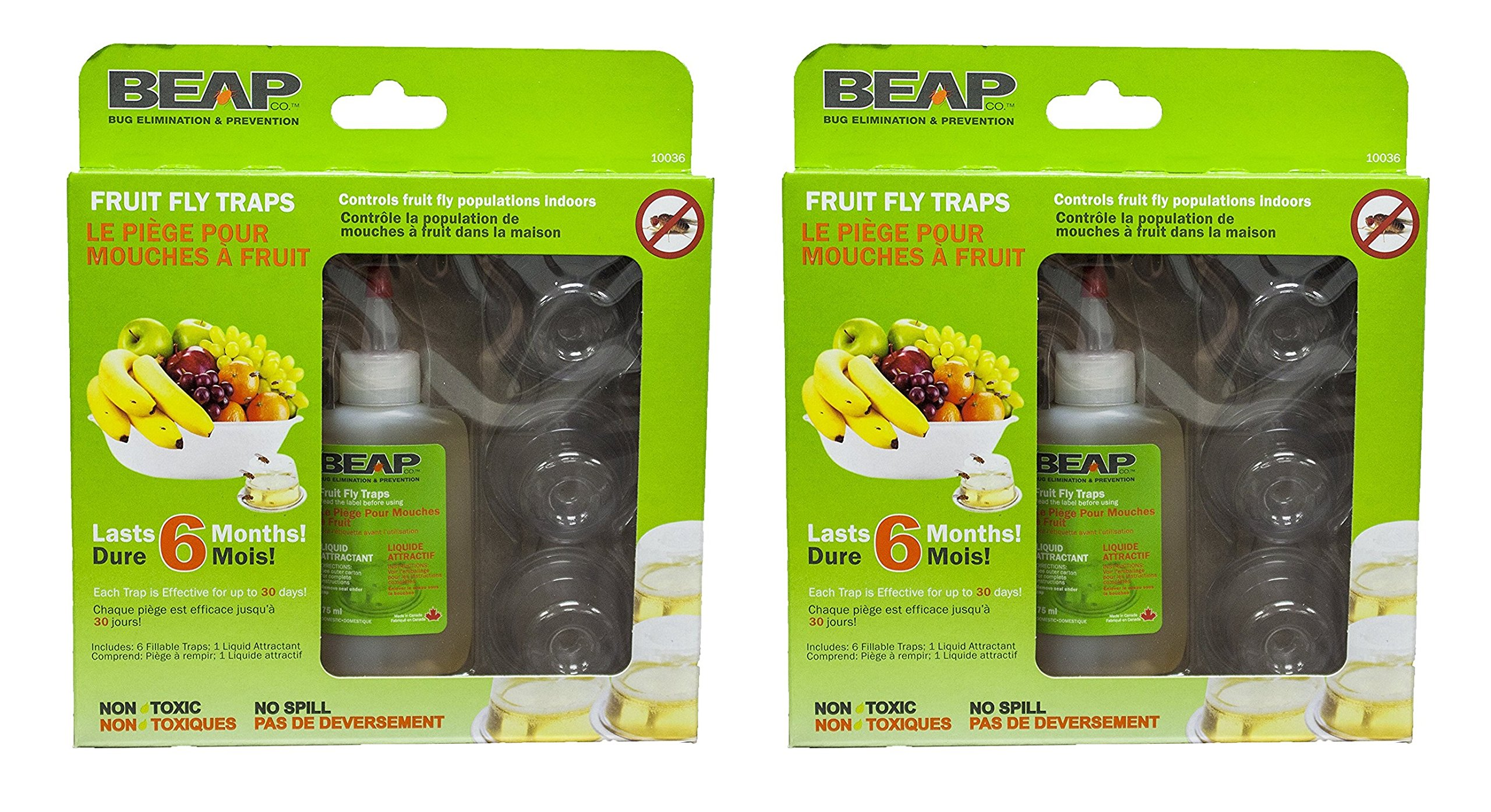 BEAPCO eHJwoI 6-Pack Drop-Ins Fruit Fly Traps, 2 Units
