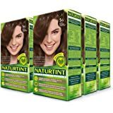 Naturtint Permanent Hair Color - 5G Light Golden Chestnut, 5.28 fl oz (6-pack)
