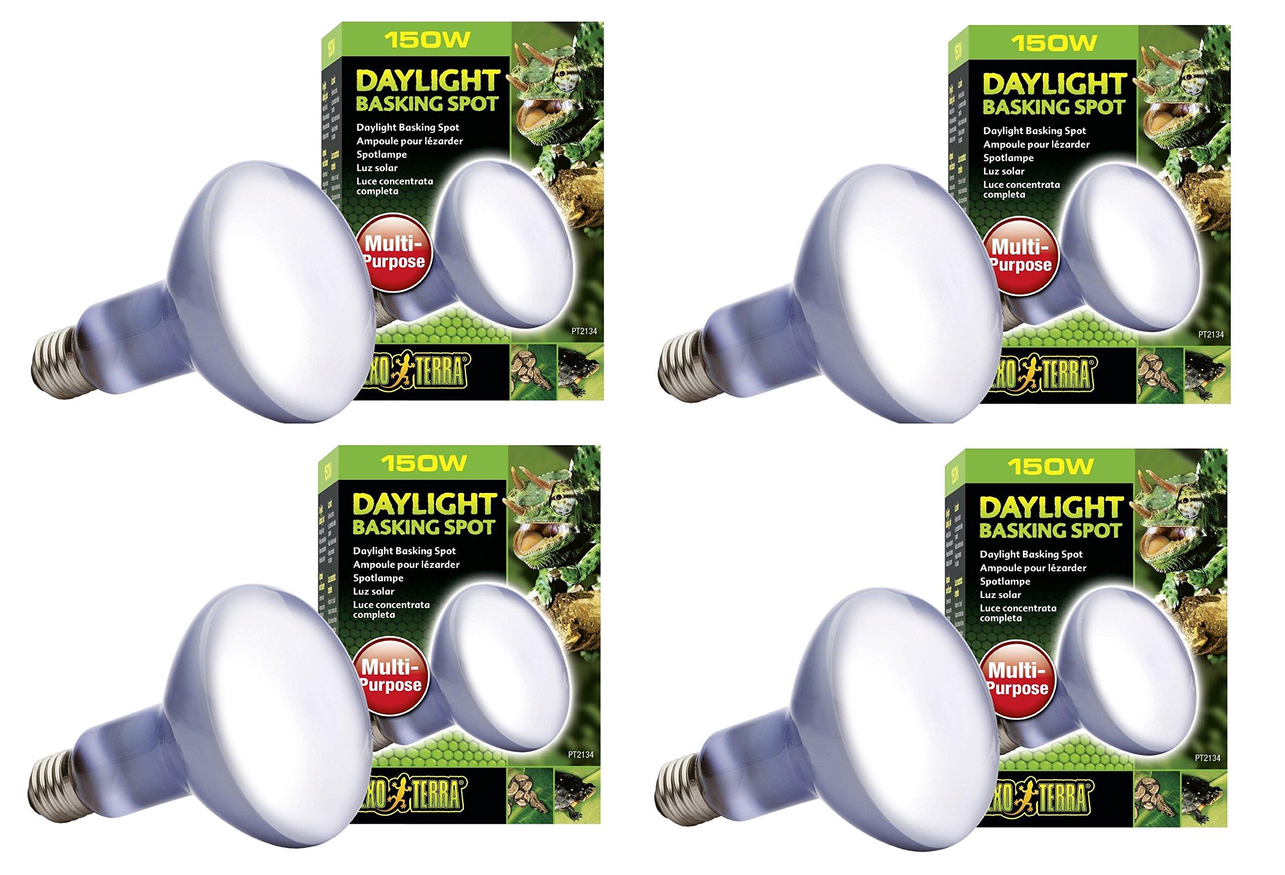 Exo Terra Sun-Glo Basking Spot Lamp, 150-Watt/120-Volt (4 Pack)