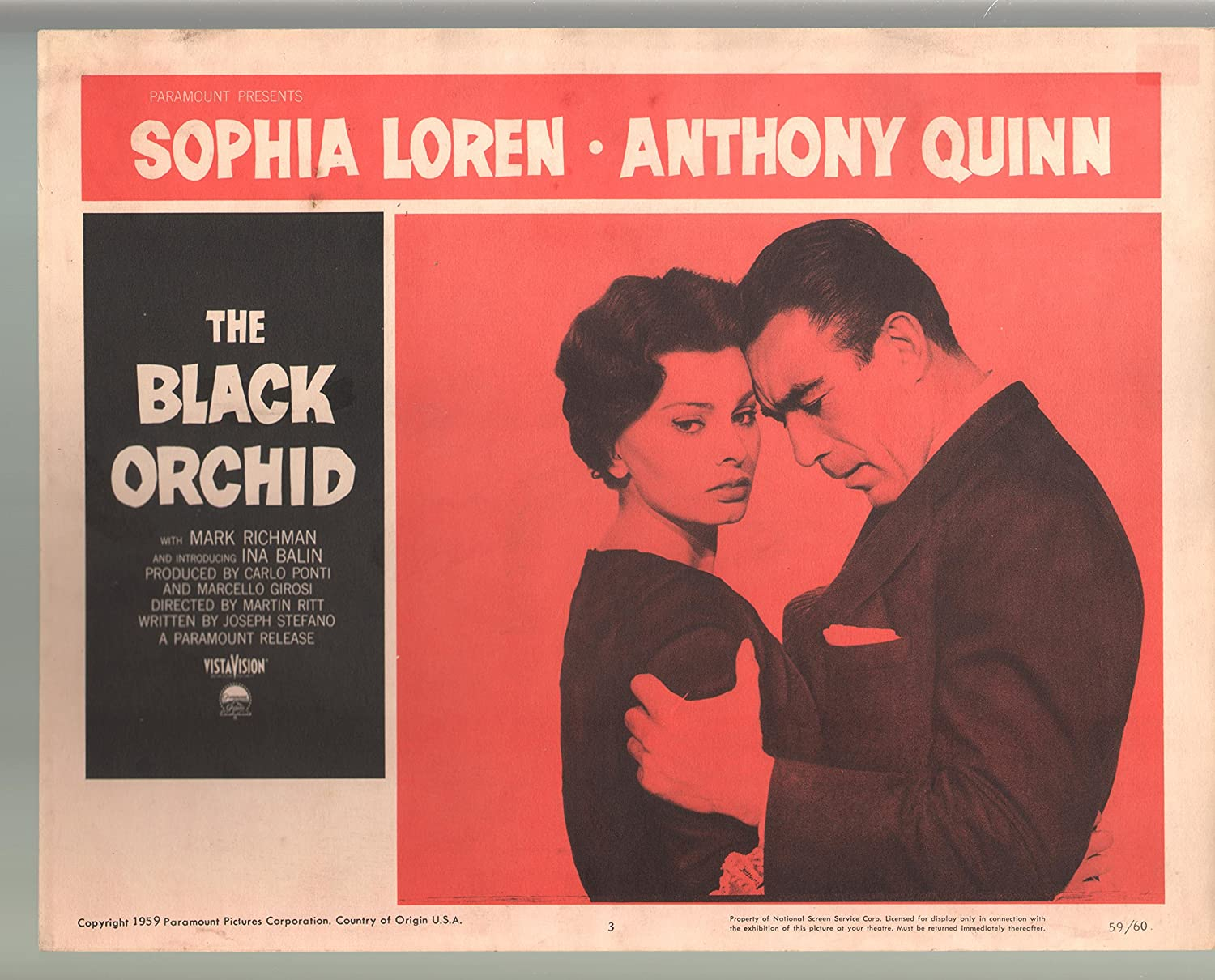 Amazon.com: MOVIE POSTER: Black Orchid-Sophia Loren-Anthony Quinn ...