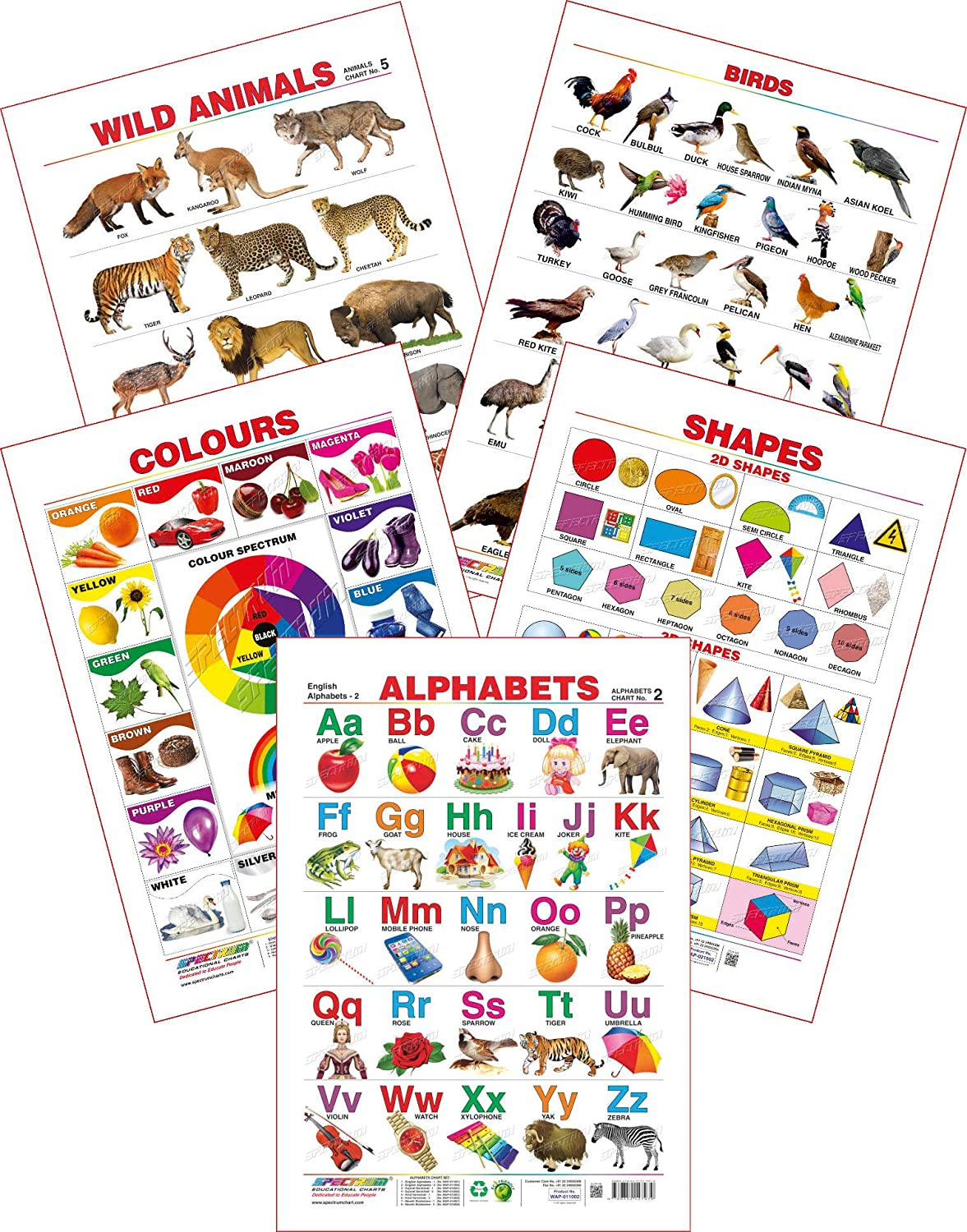 Spectrum Educational Wall Charts (Set of 5) :(English Alphabets