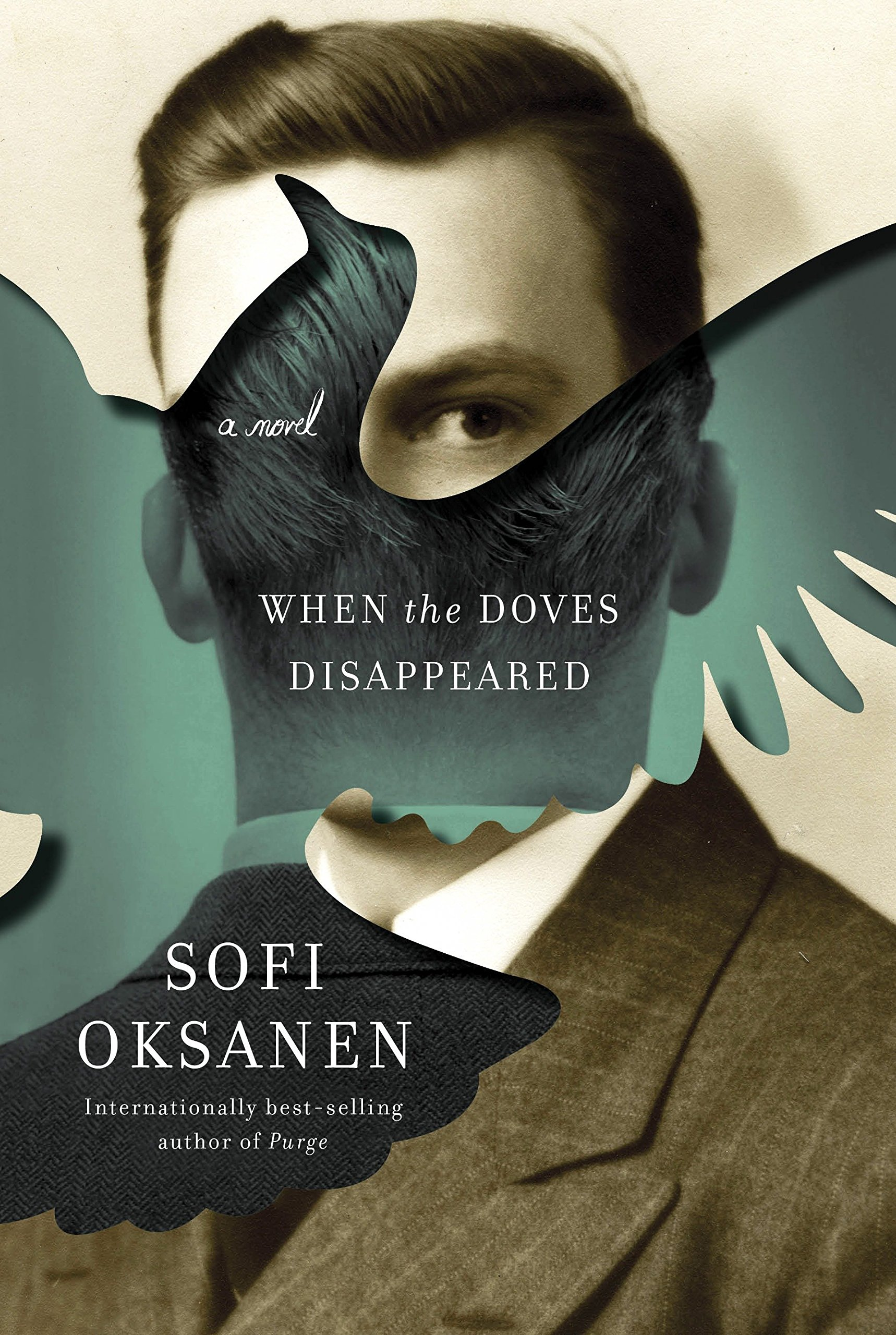 Download When the Doves Disappeared: A novel pdf