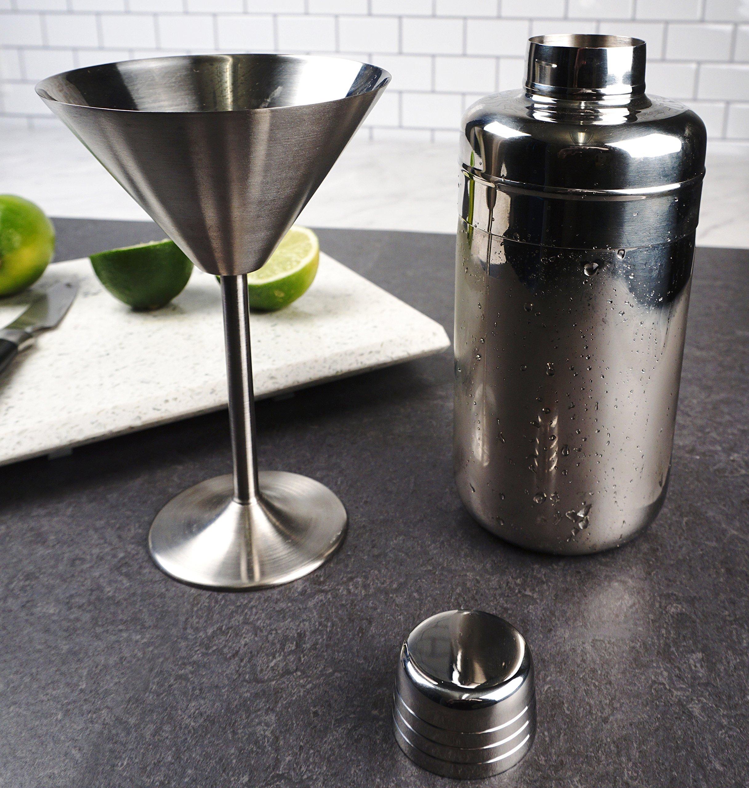 RSVP Endurance Stainless Steel Martini Glasses, Set of 2