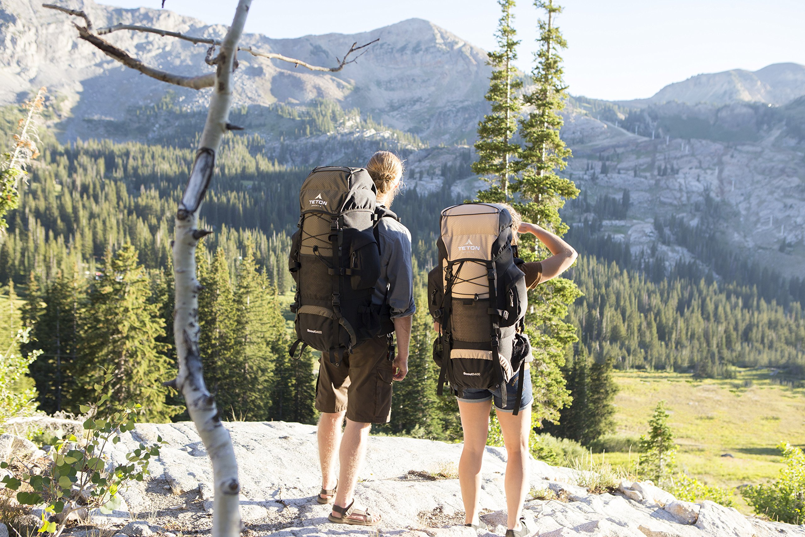6eded9da17 TETON Sports Scout 3400 Internal Frame Backpack