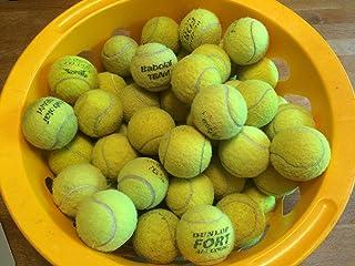 Pinzhi-10 X, Palline da ping pong, di qualità superiore, ideale per cani, motivo: Golden Retriever di qualità superiore Shark Tennis Balls