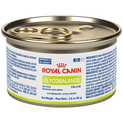 Amazon.com : ROYAL CANIN Feline Glycobalance Morsels In Gravy Can (24/3 oz) Cat Food : Canned Wet Pet Food : Pet Supplies