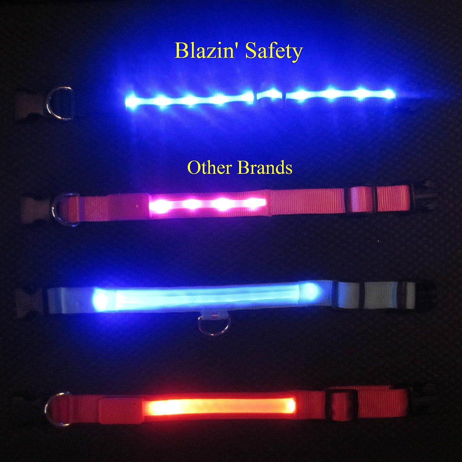 Blazin' Safety LED Dog Leash - USB Rechargeable - 2