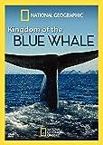 Kingdom of Blue Whale