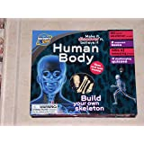 Human Body Activity Kit: Build Your Own Skeleton (Discovery Kids)
