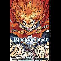 Black Clover, Vol. 15: The Victors