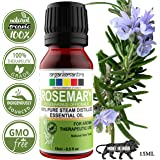 Organix Mantra Rosemary Steam Distilled Essential Oil - 100% Pure Aroma, Therapeutic Grade