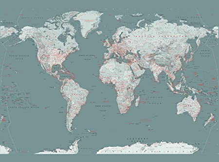 1 wall world map feature wallpaper mural wood silver 158 x 232 1 wall world map feature wallpaper mural wood silver 158 x 232 m gumiabroncs Gallery
