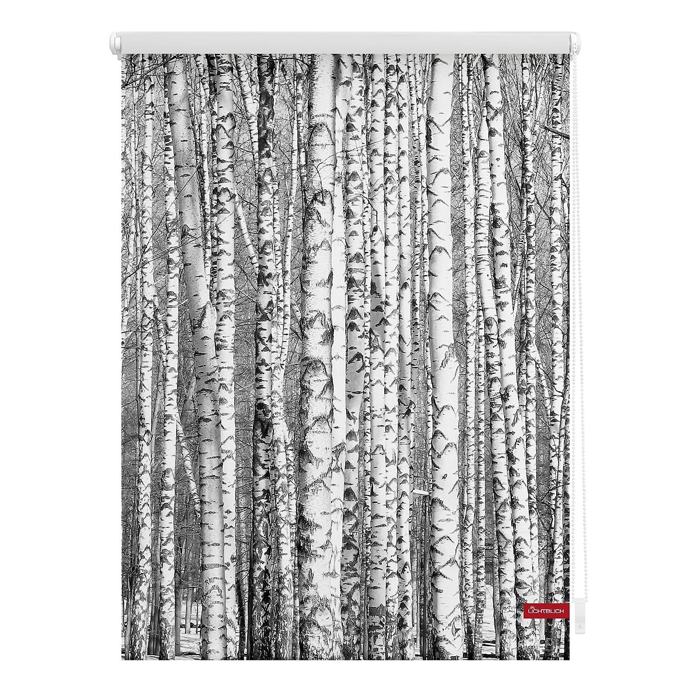 Lichtblick KRT.100.150.367 Rollo Klemmfix, ohne Bohren, blickdicht, Birken - Schwarz-Weiß Schwarz-Weiß 100 x 150 cm (B x L)