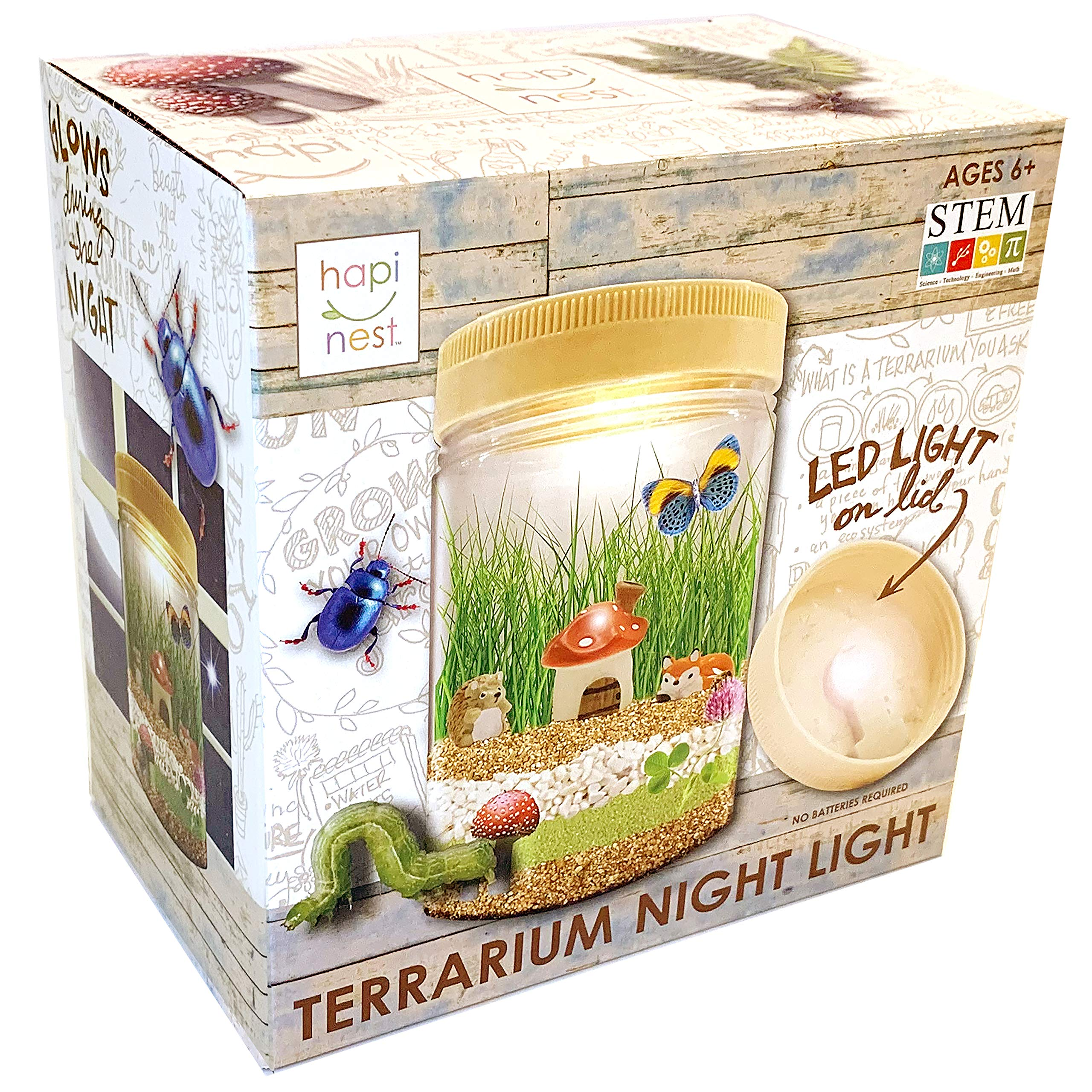 Hapinest Light-up Terrarium Kit STEM Science Arts and Crafts Gift for Kids Boys and Girls, ages 6, 7, 8, 9, 10 years old