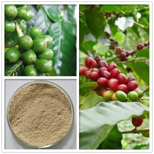 B Mobile Apps Coffee Extract product image