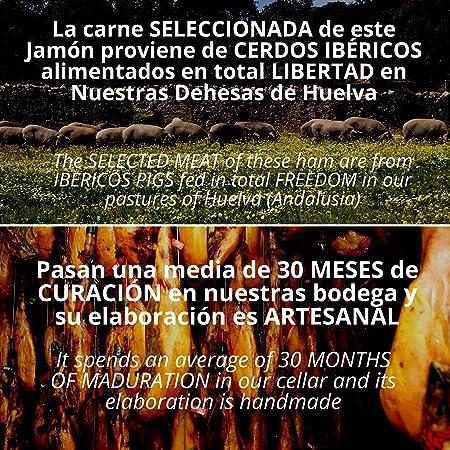 Paleta de Jamon de Bellota Iberico 75% Raza Iberica - Jamon Iberico de Elaboracion Artesanal - Embutidos Ibericos de Bellota Pata Negra - Pieza Tradicional 4.5 - 5 kg