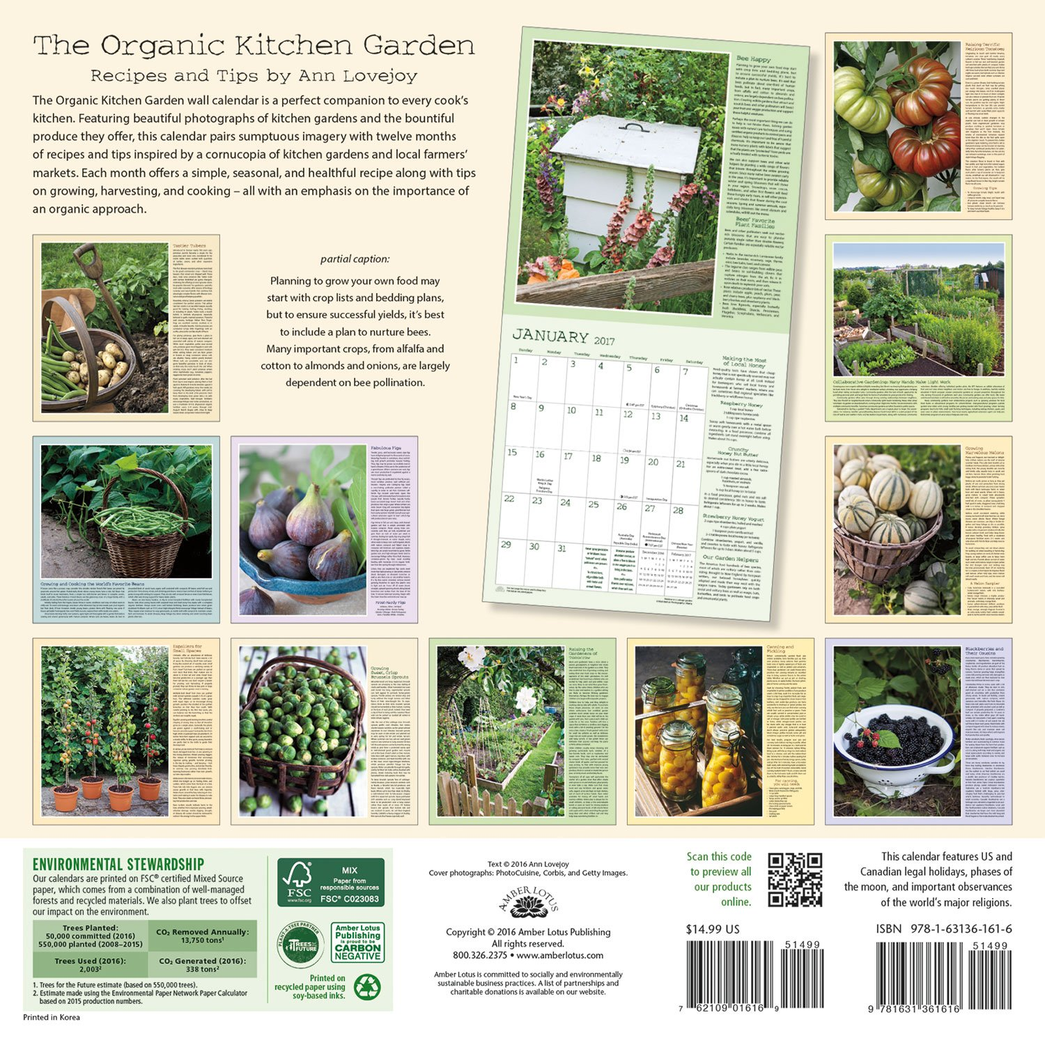 The Organic Kitchen Garden 2017 Wall Calendar: Recipes and Tips by Ann  Lovejoy: Ann Lovejoy, Amber Lotus Publishing: 9781631361616: Amazon.com:  Books