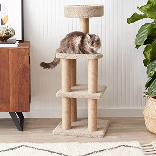 AmazonBasics Cat Activity Tree with Scratching Posts Renewed