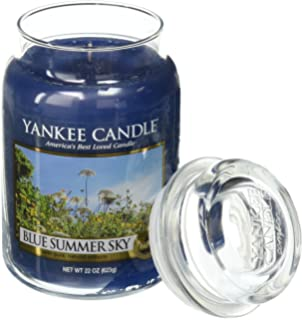 Amazon.com: Yankee Candle Company Summer Wish Large Jar Candle ...