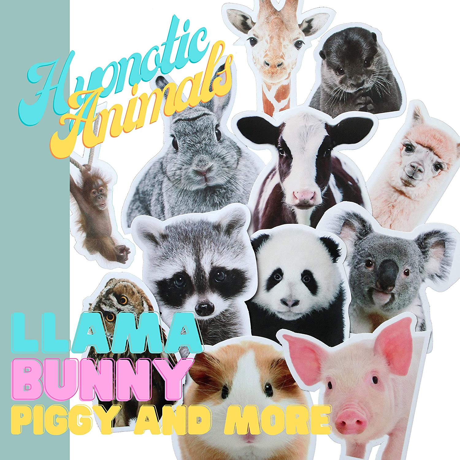 Animal Laptop Stickers - Waterproof, Large, Cute Decals - Laptop, Water Bottle, Skateboard - Animals Included: Panda Hamster Monkey Bunny Cow Otter Owl Pig Giraffe Llama Koala Raccoon