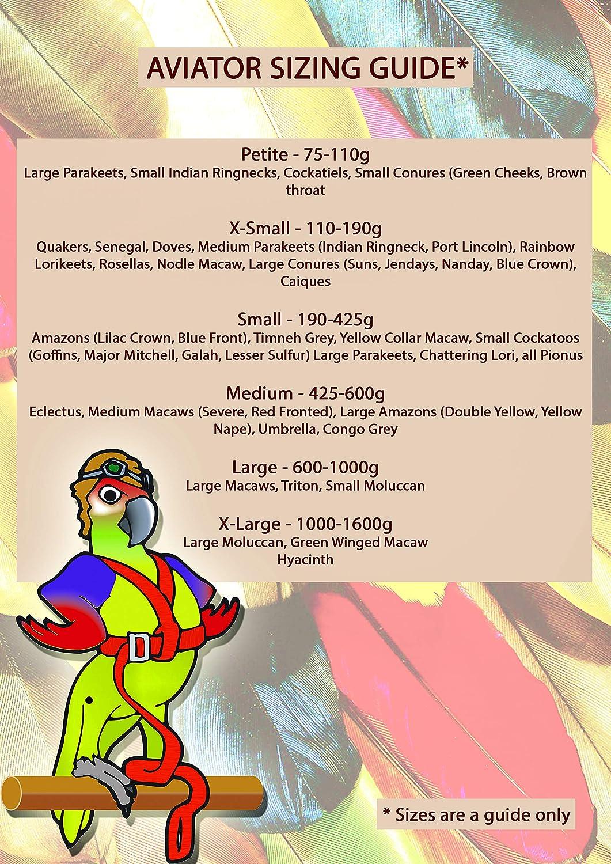 The AVIATOR El Arnés de Aves Chiquita Rojo: Amazon.es: Productos ...