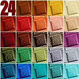 Epoxy Resin Dye – Mica Powder – 24 Powdered Pigments Set – Soap Dye – Hand Soap Making Supplies – Eyeshadow and Lips…
