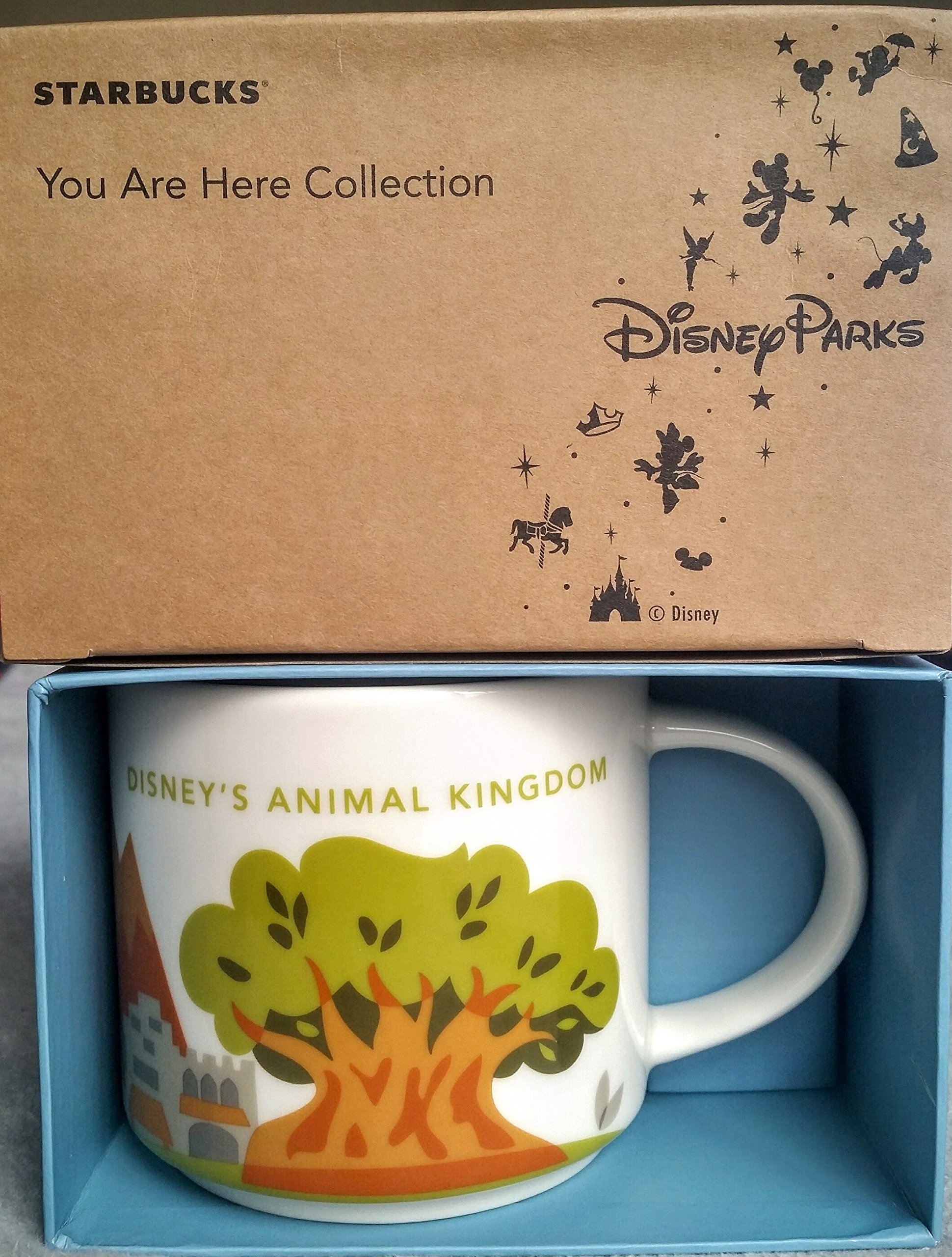 Disney World Starbucks Animal Kingdom You Are Here Coffee Mug