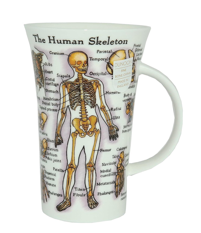 Dunoon Tasse The Human Body Amazon Kche Haushalt