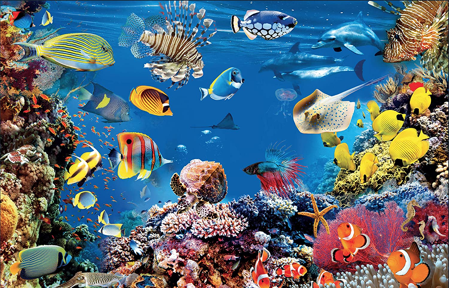 Quazzie Design Jigsaw Puzzles for Adults 1000 Piece Ocean Scene with Fish a Jigsaw Puzzle for Adults and Kids and Young Adults Cool Undersea Colorful Hard Nature Jigsaw Puzzle Large Size 20 x 29.5In.