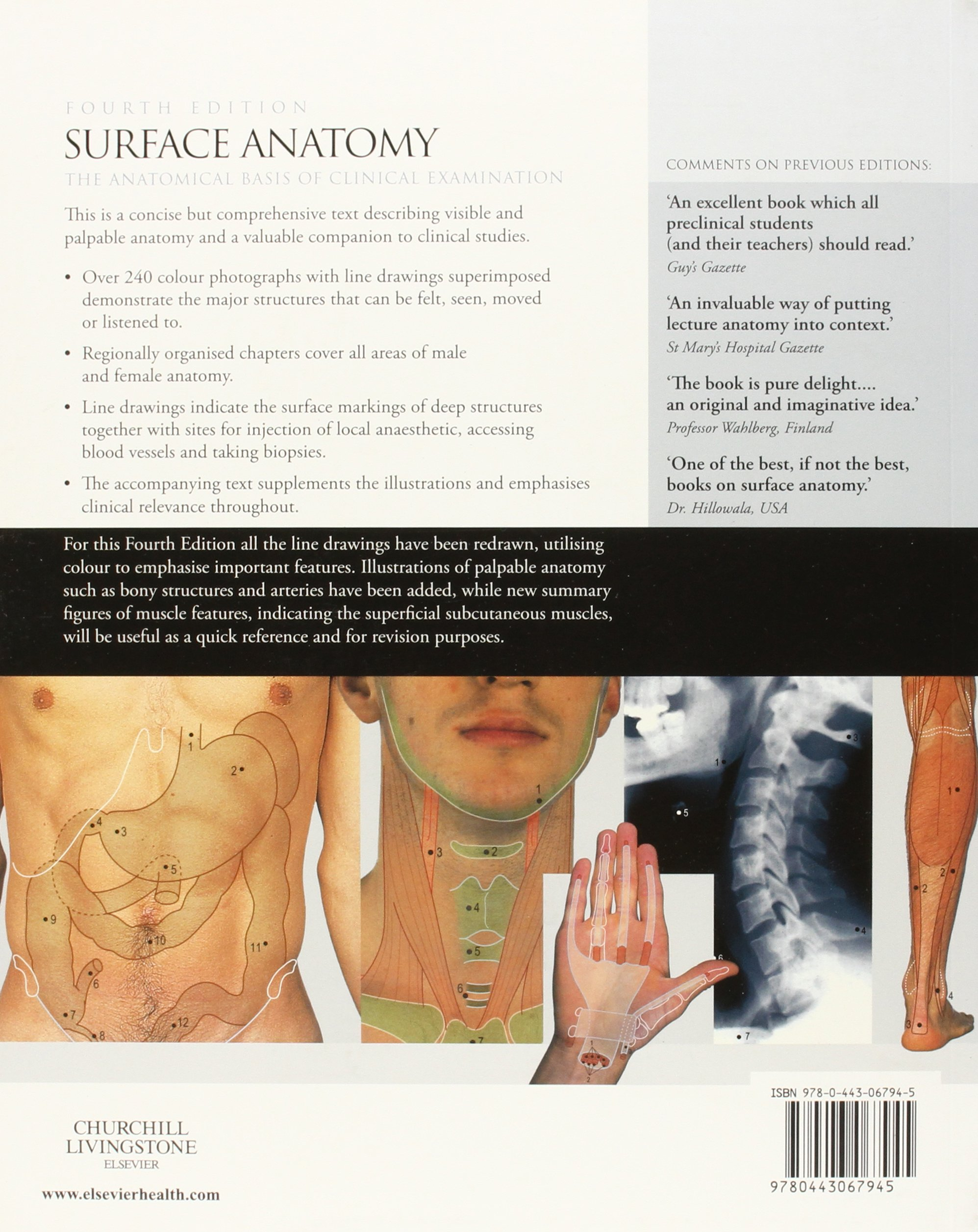 Surface Anatomy: The Anatomical Basis of Clinical Examination ...