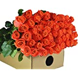 Farm2Door Wholesale Roses: 25 Fresh Orange Roses (Long Stemmed - 50cm) from Colombia - Farm Direct Wholesale Fresh Flowers