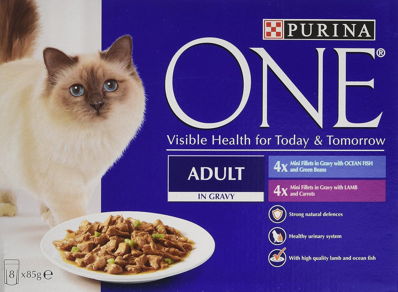 Purina ONE - Lote de 5 filetes para adulto con forma de gato mojado, 8 x 85 g: Amazon.es: Productos para mascotas