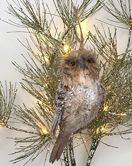 Amazoncom Set Of 4 Owl Christmas Ornaments Woodland Owls With