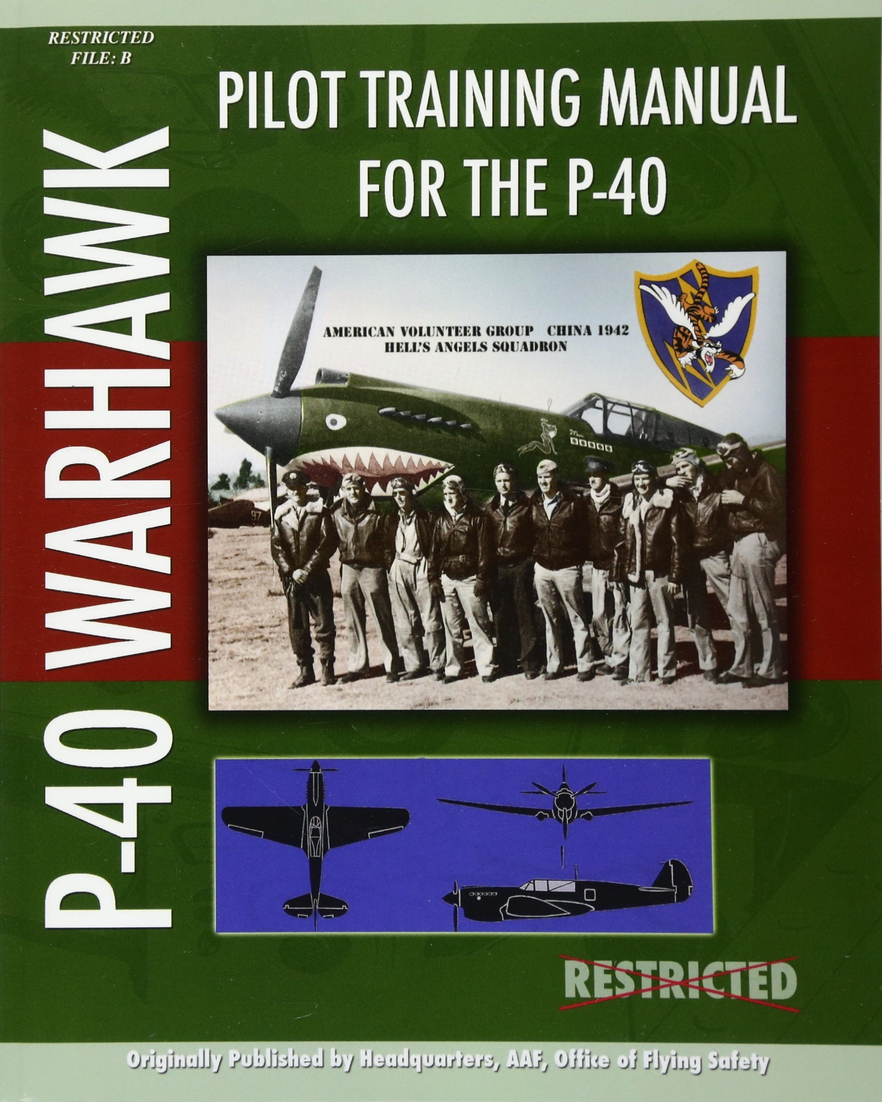 Read Online Pilot Training Manual for the P-40 ebook