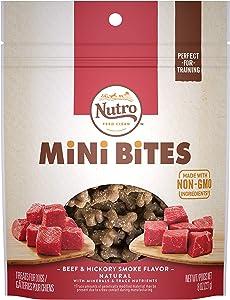 NUTRO Mini Bites Dog Treats